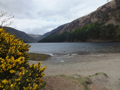 L'Upper Lake à Glendalough