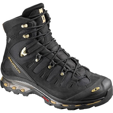 Chaussure Salomon Quest 4D GTX